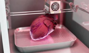 Are 3-D Printers Our New Organ Donors?