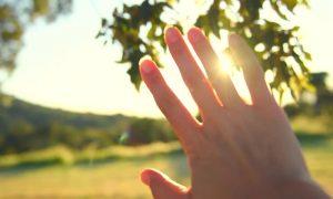 #5 Crack the Window, Let the Sun Inside. –