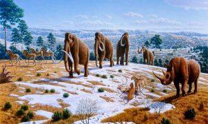 The Story of the Pleistocene Ice Age