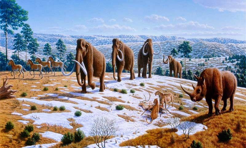 The Story of the Pleistocene Ice Age