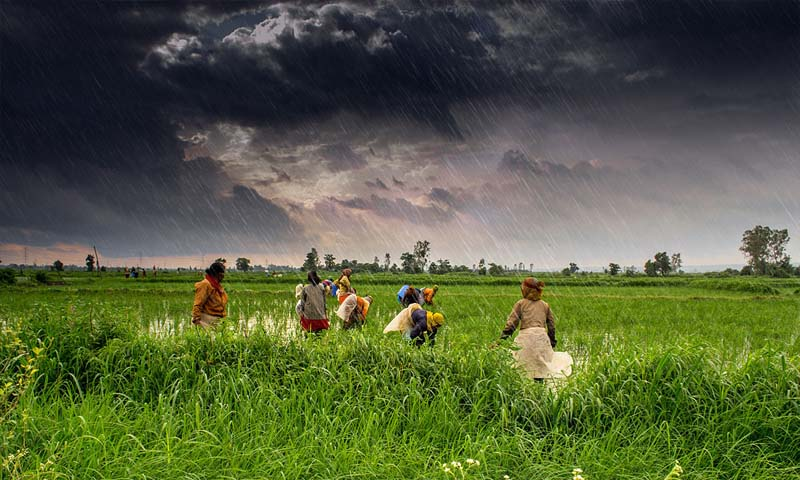 Can Agriculture Revive the Economy and Make Bharat Atma Nirbhar
