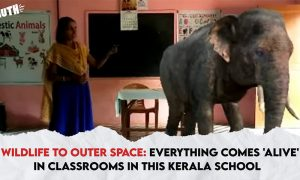 Virtual Elephant in a Kindergarten Online Class!