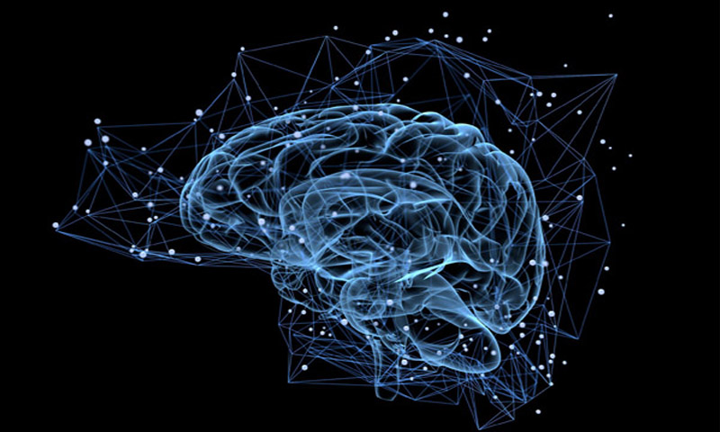 Artificial Intelligence and Human Brain Can Merge with this Material!