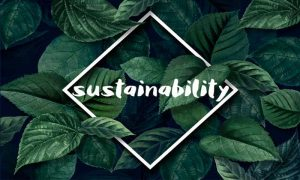 Walk the Sustainable Fashion Way and Pave a New Way for the World
