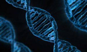 Can the Coronavirus Kill You with A Rare Genetic Mutation?