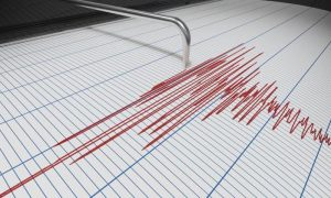 Drop in Global Seismic Noise: Pandemic Effects