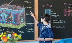 A School that Believes in Innovative Teaching: How are Such Institutions Different?
